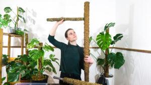 Opore za rastline: kaj so, kdaj jih uporabimo in kako naredimo samozalivalno oporo iz mahu
